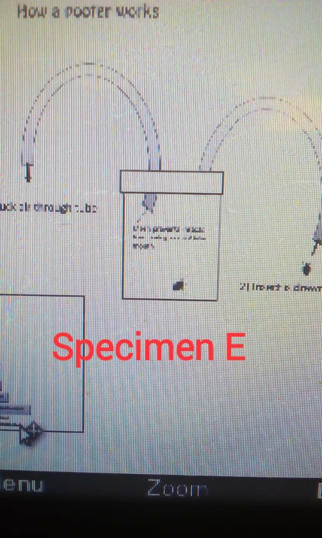 SPECIMEN E - Pooter